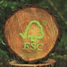 FSC Logo Wald