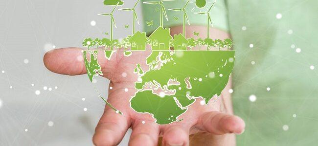 Klimaschutz im Businessalltag