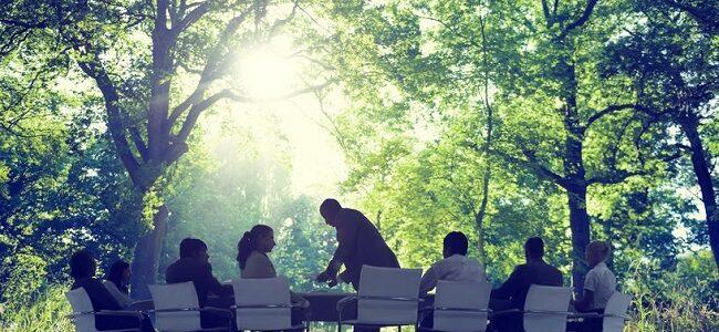 Klimaschutz und Nachhaltigkeit in Unternehmen