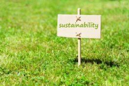 Gelebte Nachhaltigkeit im Unternehmen