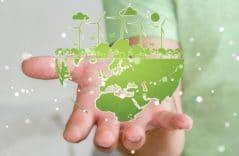 Fünf wirksame Lösungsansätze, um Klimaschutz im Businessalltag zu verankern