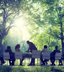 Wie können Unternehmen Klimaschutz und Nachhaltigkeit fördern?