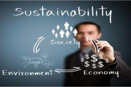 Nachhaltigkeit in Unternehmen und bei Gründungen