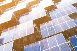 Wie Organisationen ihren Stromverbrauch senken und positiven Einfluss auf ihre Energiebilanz nehmen