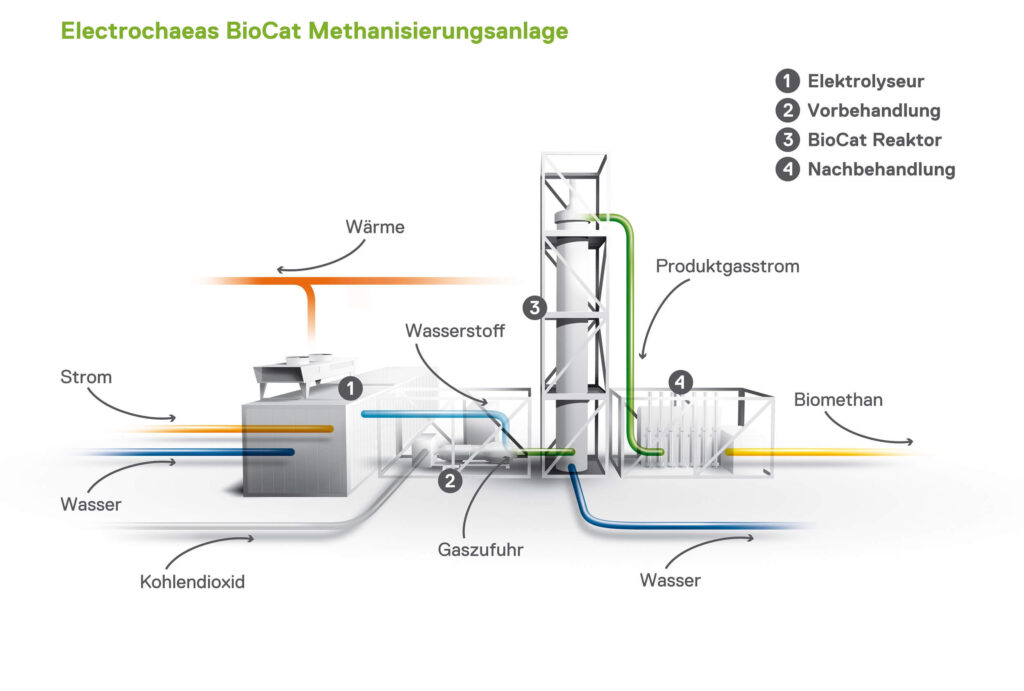 BioCat 3D Zeichnung RGBcElectrochaea GmbH Michael Rogge 2500x tiny