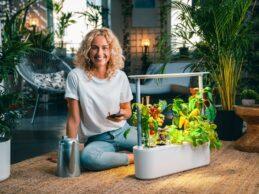 Urban Farming – urgrow liefert ein System für Selbstversorger in Städten